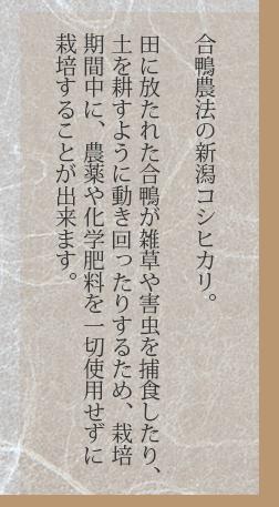 合鴨農法米新潟コシヒカリ